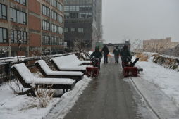 Winter Snow at The High Line and Fort Greene Park