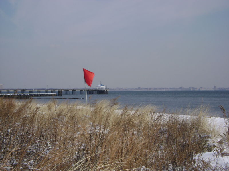 Midland Beach Dunes In Winter