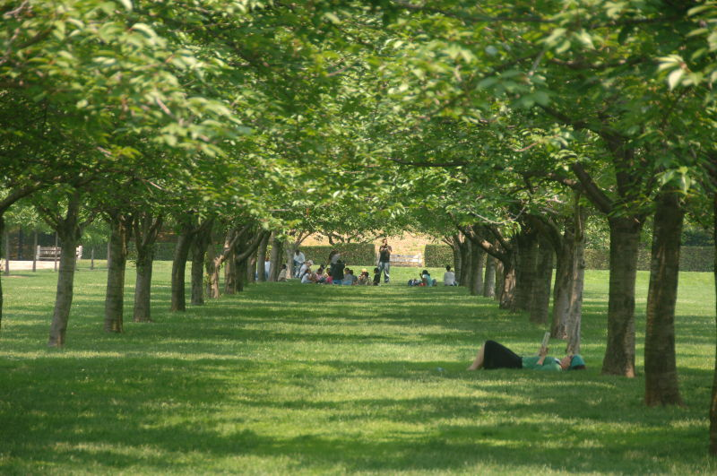 Brooklyn Botanic Garden Events : NYC Parks