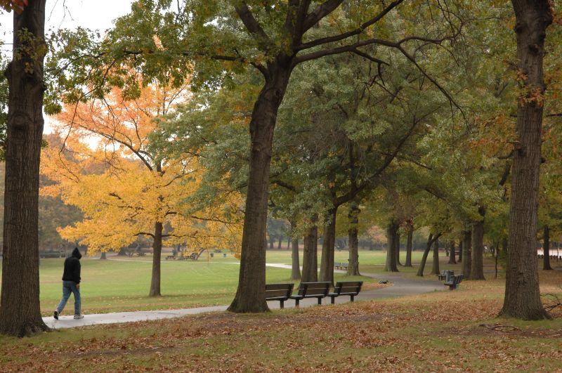 Alley Pond Park Images Nyc Parks