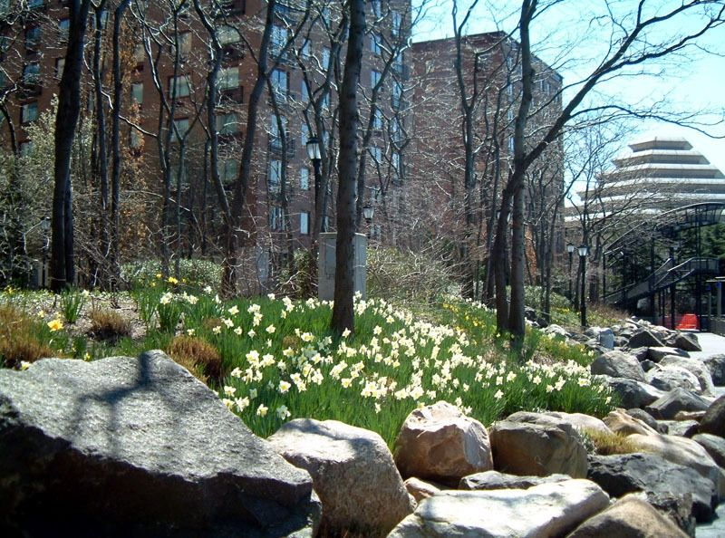 The Battery Events NYC Parks