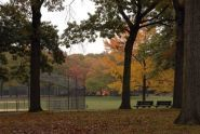The Ballfields in Autumn
