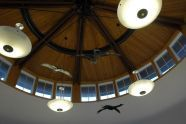 Nature Center Ceiling