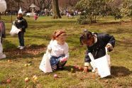 An Easter Egg Hunt in the Park