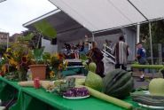 2009 GreenThumb Harvest Fair