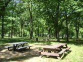 Picnic Area at Brookville Park