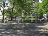 Col. Young Playground Spray Showers