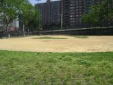 Col. Young Playground Baseball Field