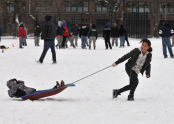 2nd Annual Bronx Winterfest