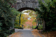 Fort Tryon Park (10/30/2013)
