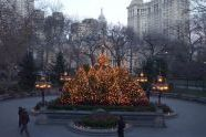 Christmas Tree in City Hall Park