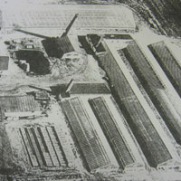 picture of mohlenhoff farm in 1958