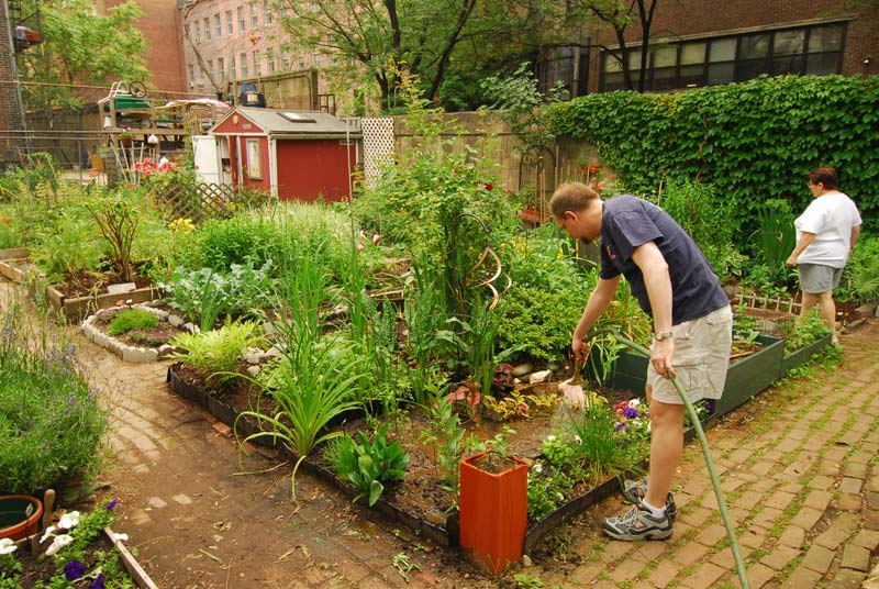 Tales of Gardening Greatness Community Gardens NYC Parks