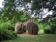 Patrick Dougherty's sculpture <em>Natural History</em> in late September. Photo by Rebecca Bullene. Courtesy of the Brooklyn Botanic Garden
