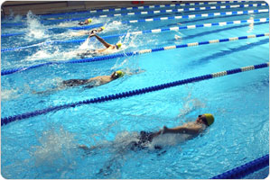 Swimmers in lanes of swimming pool, swimming